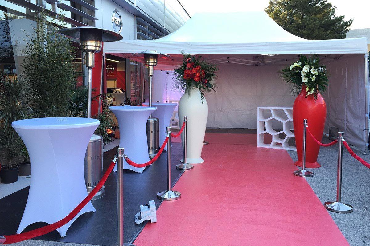 Entrée VIP évènements d'entreprise en PACA